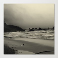 What the Water Brought Me Canvas Print
