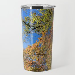 Changing Leaves at Biltmore Travel Mug