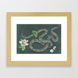 King Snake Framed Art Print