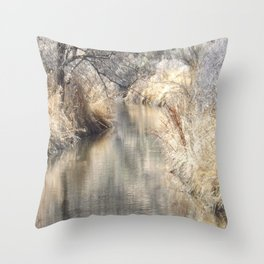 A Tranquil Setting Throw Pillow