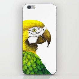 Green Macaw iPhone Skin