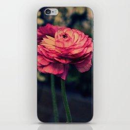 Vintage Ranunculus 10 iPhone Skin