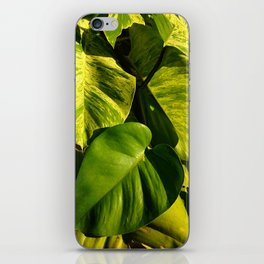 Feeling Green iPhone Skin