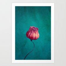 Miss Lampion Art Print