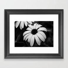 Untitled Flower Framed Art Print