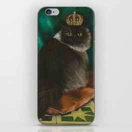 DONETE, A FANCY CHOCOLATE PERSIAN CAT iPhone Skin