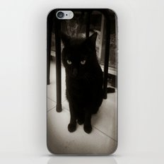 Black Kitty iPhone & iPod Skin