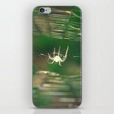 Stuck iPhone & iPod Skin