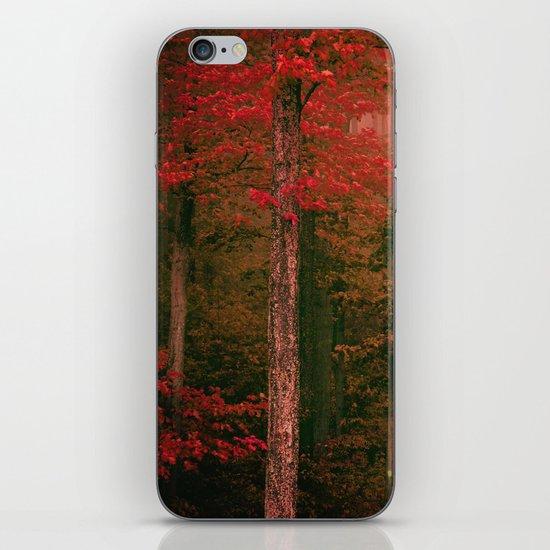 Autumn Fog iPhone & iPod Skin
