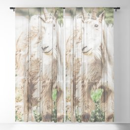 Wild Goat // White Fur Profile Picture Shot at Yosemite National Park Sheer Curtain