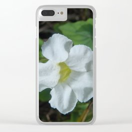 White Tropical Flower Found in Fiji Clear iPhone Case