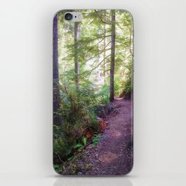Trail into the Forest iPhone Skin