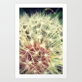 Back Yard Fun Art Print