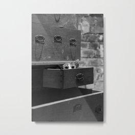 Cat in the closet Metal Print