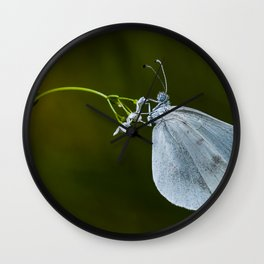 """Lady white butterfly """"Lepidea sinapis"""" Wall Clock"""