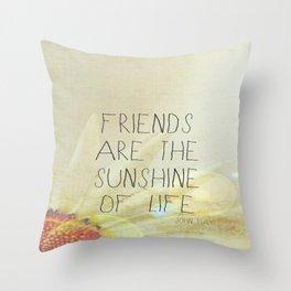 Sunshine & Friendship Throw Pillow