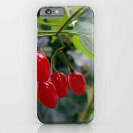Autumn red spots iPhone Case