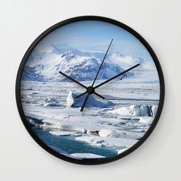 Bird in Iceland Wall Clock