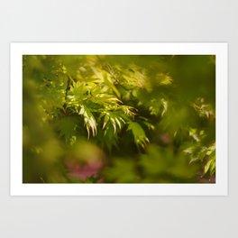 Through the Maple Leaves Art Print
