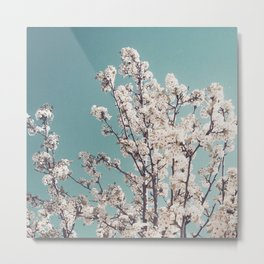 Bloomed 1 Metal Print