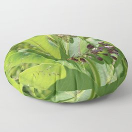 Multi Colored Milkweed Blossoms Floor Pillow