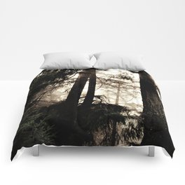 in the forest Comforters