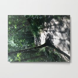 To Elowah Metal Print
