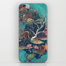 Coral Communities iPhone Skin