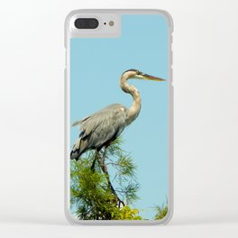 North Carolina Marsh Clear iPhone Case