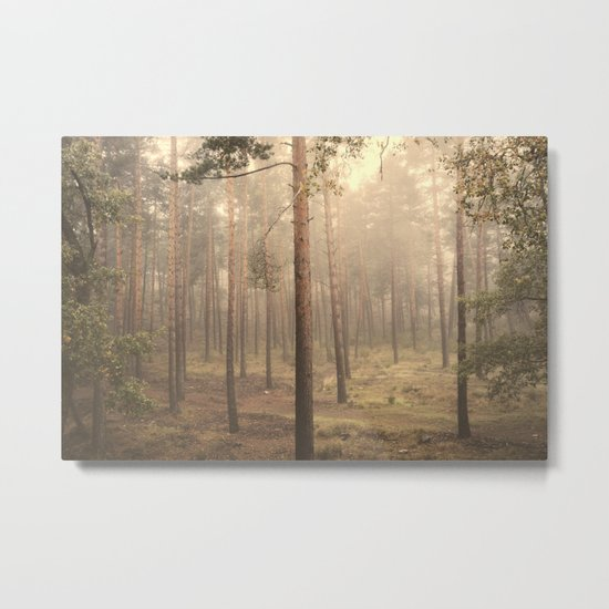 """Rectilineum"". Secret places. Foggy dreams. Retro Metal Print"