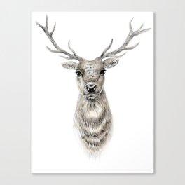 Proud Stag - Reindeer - Deer Canvas Print