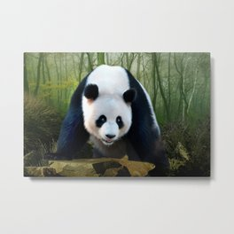 The Giant Panda Metal Print