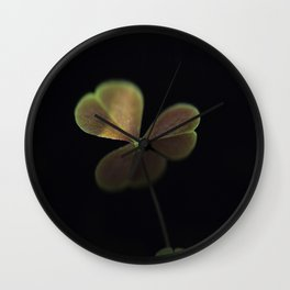 Oxalis in light Wall Clock