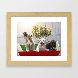 A Puppy's Song Framed Art Print
