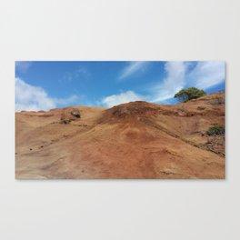 Waimea Red Canvas Print