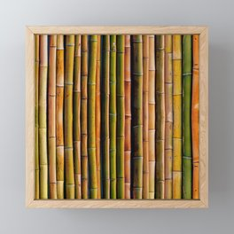 Bamboo fence, texture Framed Mini Art Print