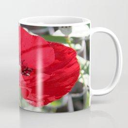 Single Red Poppy Flower  Coffee Mug