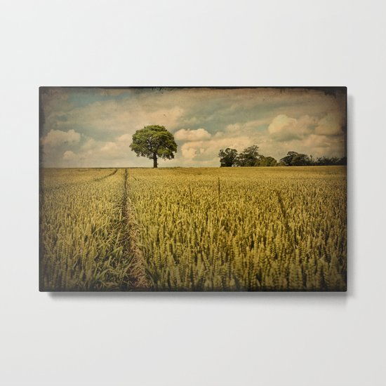 A Summers Walk Metal Print