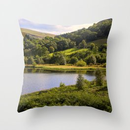 Private Fishing on Doly mynach Throw Pillow