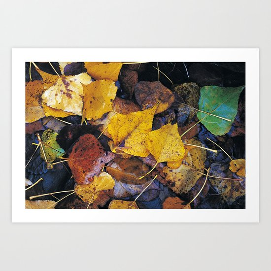 Rain leaves II Art Print