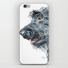 Black Labradoodle iPhone & iPod Skin