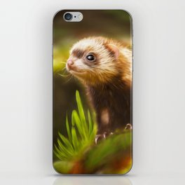 cute ferret iPhone Skin