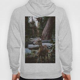 Sequoia Forest Deer Hoody