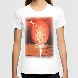 Sun in red T-shirt