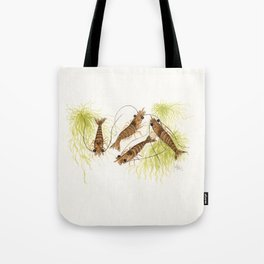 """Shrimp"" by Amber Marine ~ Watercolor Painting, (Copyright 2013) Tote Bag"