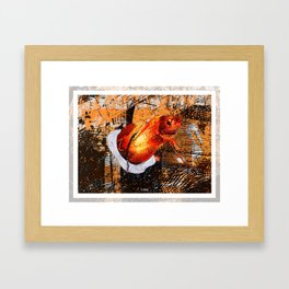 Flashy Fish Framed Art Print