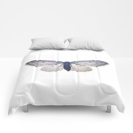 Trasparent Butterfly  Comforters