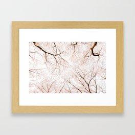 blossom #society6 #decor #buyart Framed Art Print