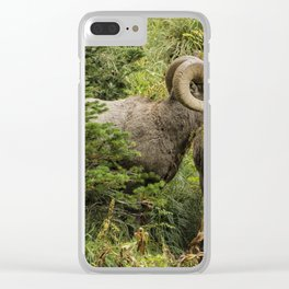 Two Rams Clear iPhone Case