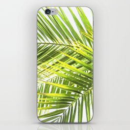 Palm leaves tropical illustration iPhone Skin